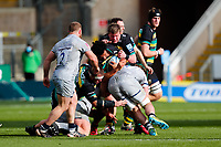 13th March 2021; Franklin's Gardens, Northampton, East Midlands, England; Premiership Rugby Union, Northampton Saints versus Sale Sharks; Lewis Ludlam of Northampton Saints takes the ball into contact