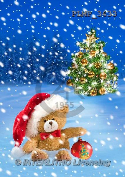 Marek, CHRISTMAS ANIMALS, WEIHNACHTEN TIERE, NAVIDAD ANIMALES, teddies, photos+++++,PLMP3433,#Xa# in snow,outsite,
