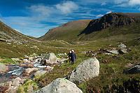 Stacan Dubha, Beinn Mheadhoin and Feith Buidhe from the Loch Avon Basin, Cairngorm National Park, Badenoch and Speyside, Highland
