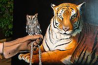 2016-10-12 Houston Zoo Art Reception