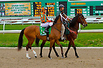 February 21, 2015: Lovely Maria with Kerwin D Clark up in the Rachel Alexandra Stakes at the New Orleans Fairgrounds Risen Star Stakes Day. Steve Dalmado/ESW/CSM
