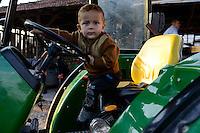 TURKEY Sakarya, small by plays tractor driving at farm / TUERKEI, kleiner Junge spielt Traktor fahren auf einer Farm bei Sakarya