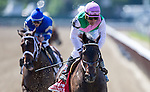 June 7, 2014: Close Hatches, ridden by Joel Rosario after finishing the 46th running of The Ogden Phipps on Belmont Stakes Day in Elmont, NY. Jon Durr/ESW/CSM