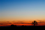 ©Paul Trummer, Mauren / FL, www.travel-lightart.com, Scenic along Road between El Cabo de Gata and Retamar, Almeria, Andalucia, Andalusia, Cabo de Gata, Europe, Geography, Spain, Andalusien, Europa, Geografie, Kap von Gata, Spanien, Landschaft, Landschaftsform, Landschaftsformen, Naturpark, naturparks, Naturreservat, Naturreservate, Naturschutzgebiet, Naturschutzgebiete, Naturschutzpark, Naturschutzparks, landscape, landscape form, landscape forms, landscapes, Nationalpark, Nationalparks, nature reserve, nature reserves, celestial bodies, celestial body, celestial bodys, light, silhouette, sun, sunset, Gestirn, Gestirne, Himmelskoerper, Himmelskörper, Licht, Sonne, Sonnen, Sonnenschein, Sonnenuntergaenge, Sonnenuntergang, Sonnenuntergänge, Baum, Bäume, Botanik, Flora, Lebewesen, Natur, Pflanze, Pflanzen, Vegetation, botanic, botany, living being, nature, plant, plants, tree, trees, dusk, elements, evening skies, evening sky, twilight, Abend, Abenddämmerung, Abendhimmel, abendrot, blaue Stunde, Naturelemente, Laubbaum, Laubbäume, Palme, Palmen, deciduous tree, deciduous trees, palm tree, palm trees