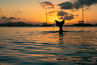 Mermaid in the sunset<br />