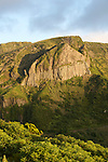 Basaltic columns of Rocha dos Bordoes on the west coast of Flores island..