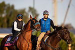 OCT 27: Breeders' Cup Juvenile Turf Sprint entrant Fair Maiden, trained by Eoin G. Harty, works at Santa Anita Park in Arcadia, California on Oct 27, 2019. Evers/Eclipse Sportswire/Breeders' Cup