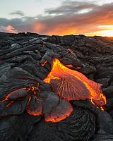 Lava Toes: The sun rises over molten lava toes spreading out on the coastal plains of Pulama Pali (of Holei Pali), Puna district, Hawai'i Island, July 2017.