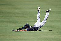 New York Yankees outfielder Rashad Crawford (48) makes a diving catch during an Instructional League game against the Philadelphia Phillies on September 27, 2016 at Bright House Field in Clearwater, Florida.  (Mike Janes/Four Seam Images)