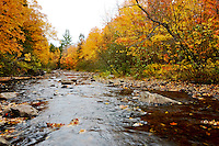 Looking downstream on the Big Huron River during the fall colors. Skanee, MI