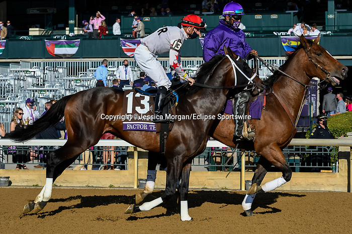 November 7, 2020 :Factor This, ridden by Brad H. Cox, is escorted to the starting gate before the FanDuel Mile presented by PDJF on Breeders' Cup Championship Saturday at Keeneland Race Course in Lexington, Kentucky on November 7, 2020. Jessica Morgan/Breeders' Cup/Eclipse Sportswire/CSM