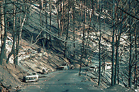 Road and cars in burned area after October, 1991 fires, Oakland Hills, California