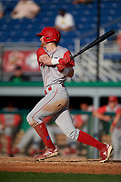 Williamsport Crosscutters Jake Holmes (22) bats during a NY-Penn League game against the Batavia Muckdogs on August 25, 2019 at Dwyer Stadium in Batavia, New York.  Williamsport defeated Batavia 10-3.  (Mike Janes/Four Seam Images)