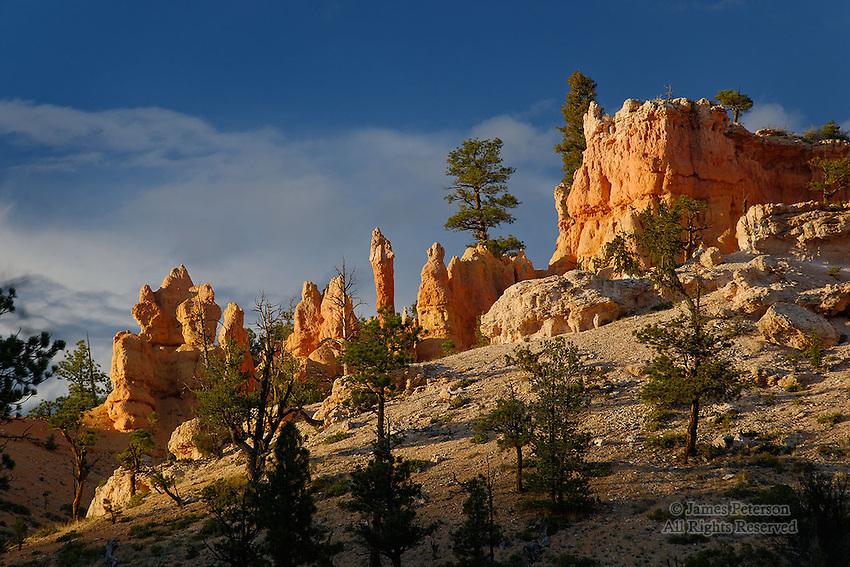 Hoodoo Ridge, Bryce Canyon, Utah