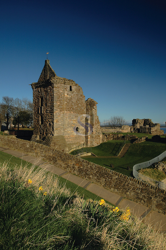 The historic remains of St Andrews Castle, St Andrews Fife. St Andrews is the Patron Saint of Scotland<br /> <br /> Copyright www.scottishhorizons.co.uk/Keith Fergus 2011 All Rights Reserved