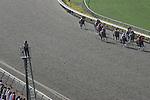 24 July 2009: Racing at Del Mar Race Track, Del Mar, CA