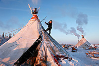 A Nenets child climbs the side of his family choom (tent) in Naryan-Mar using a rope to pull himself up its side. The Nenets are the original inhabitants in the Russian Arctic but have been displaced by both Soviet-era collectivisation and modern gas and oil exploration. Reindeer provide the Nenets with food, shelter and clothing. They sell reindeer meat to sausage factories and the antlers to China for use as traditional medicine. /Felix Features