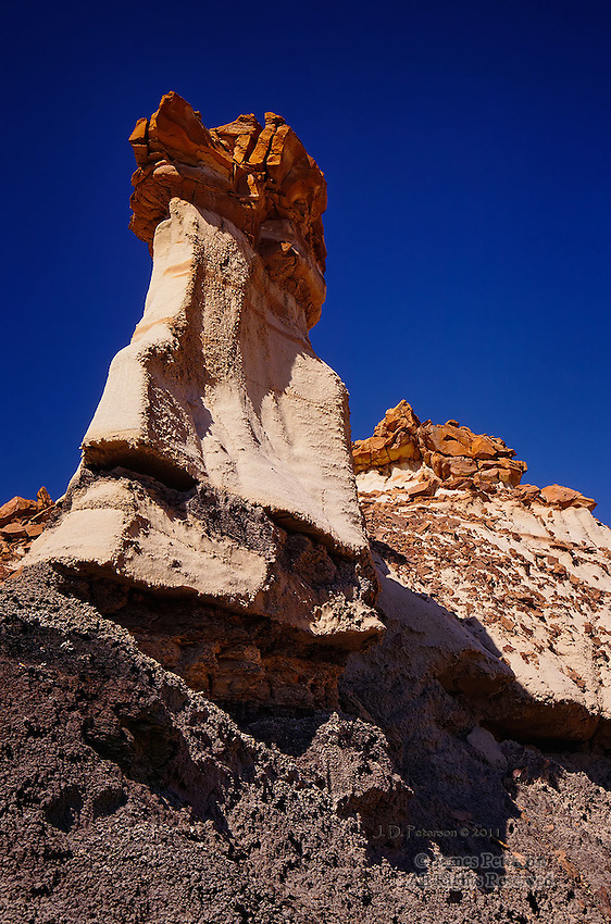 The Woodpecker, Bisti Badlands Wilderness, New Mexico.  Available in sizes up to 30 x 45 inches.
