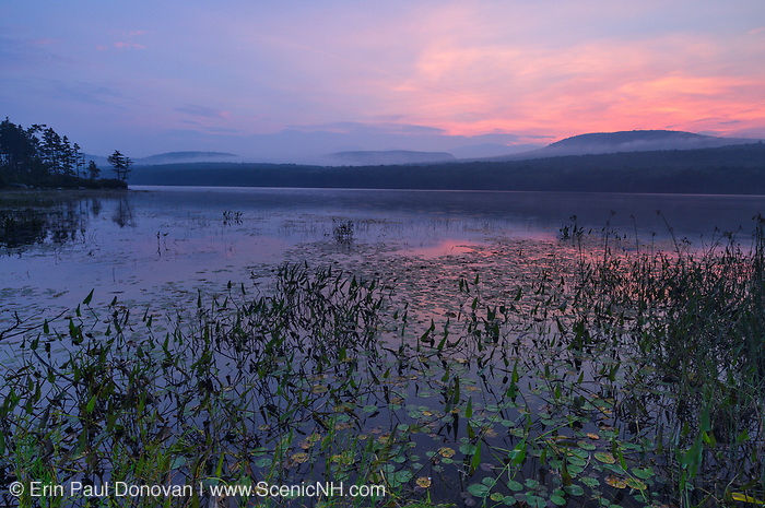 Foggy morning sunrise at Lake Tarleton in Piermont, New Hampshire during the summer months.