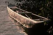 Bahia, Brazil. A dugout canoe moored to mangrove trees in a coastal channel at sundown.