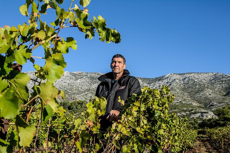 Montagne Sainte-Victoire - George Guinieri, viticulteur descôtes de Sainte-‐Victoire, à Puyloubier