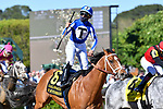 April 10, 2021: #6 By My Standards , ridden by Gabriel Saez wins the Oaklawn Mile Stakes  for trainer W. Bret Calhoun at Oaklawn Park in Hot Springs,  Arkansas. Ted McClenning/Eclipse Sportswire/CSM