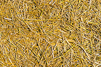 a background of hay bales