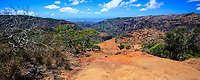 A panoramic view of Waimea Canyon, seen while hiking along the Kohua Ridge Trail, Kaua'i.