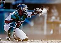 29 July 2018: Vermont Lake Monsters catcher Robert Mullen makes a dusty catch during the late innings of a game against the Batavia Muckdogs at Historic Centennial Field in Burlington, Vermont. Mullen also hit his first home run of the season: a game-winning 3-run dinger, in the bottom of the 4th, as the Lake Monsters defeated the Muckdogs 4-1 in NY Penn League action. Mandatory Credit: Ed Wolfstein Photo *** RAW (NEF) Image File Available ***