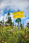 Deutschland, Bayern, Chiemgau, Ruhpolding: Wanderwegweiser zur Hoerndlwand an der Hoerndlalm | Germany, Bavaria, Chiemgau, Ruhpolding: hiking signpost at alpine pasture Hoerndlalm