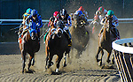 September 27, 2014: Private Zone, ridden by Martin Pedroza, wins the Vosburgh Stakes on Jockey Club Gold Cup Day at Belmont Park Race Track in Elmont, New York. John Voorhees/ESW/CSM