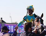 November 6, 2020: Connections for Fire at Will, winner of the Juvenile Turf Presented By Coolmore America on Breeders' Cup Championship Friday at Keeneland on November 6, 2020: in Lexington, Kentucky. Bill Denver/Breeders' Cup/Eclipse Sportswire/CSM