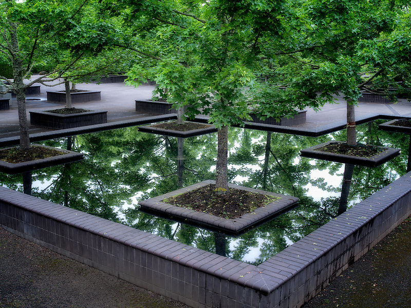 Maple trees in reflecting pool. The Oregon Garden. Silverton, Oregon