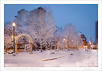 Winter at the Park by Jim Servies Photography