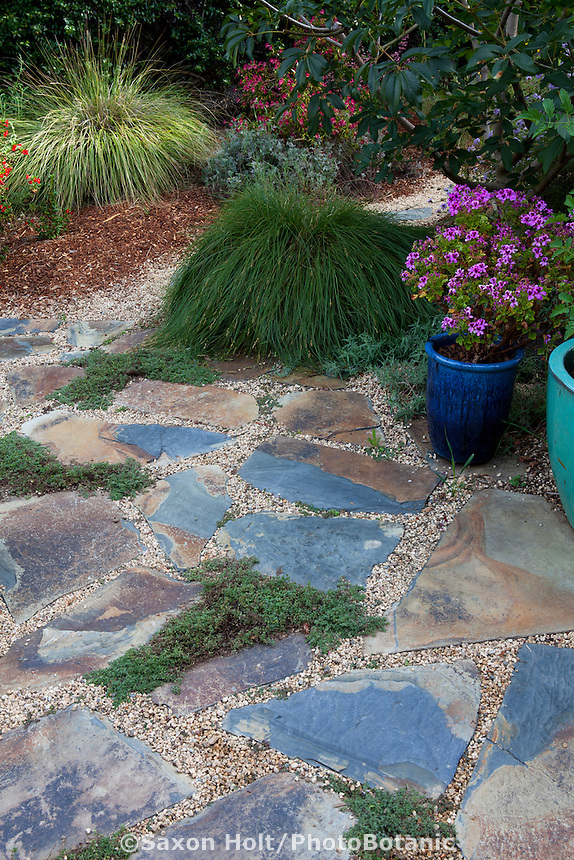 Patio with stepping stones set on permeable gravel for rain drainage; California native plants, Heath-Delaney garden
