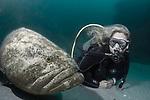 Nikole-Goliath-United Caribbean  United Caribbean Wrecks