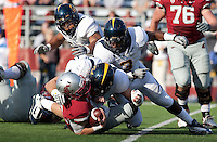 Mike Mohamed (center) D.J. Holt (right) and Mychal Kendricks (top) combine on Jeff Tuel for the sack. The University of California football defeated Washington State University 20-13 at Martin Stadium in Pullman, Washington on November 6th, 2010.