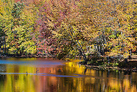 Scenic autumn pond in Adirondack State Park, New York, USA.