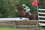 1 October 2011: Aero and Jeff Murphy win the National Sporting Library Chronicle Cup Timber Stakes at Virginia Fall Races in Middleburg, Va. Aero is owned by Alfred Griffen, Jr and trained by Doug Fout. Susan M. Carter/Eclipse Sportswire