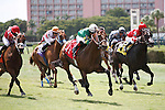 Tale of a Champion with Luis Saez up winning the Bob Umphrey Turf Sprint Stakes, Calder Race Course, Miami Gardens Florida. 07-07-2012.  Arron Haggart/Eclipse Sportswire.