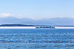 Container ship passes a fog bank inbound through Admiralty Inlet enroute to Puget Sound.  The Olympic Mountains loom in background.