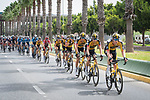 The peloton led by Jumbo-Visma during Stage 10 of La Vuelta d'Espana 2021, running 189km from Roquetas de Mar to Rincón de la Victoria, Spain. 24th August 2021.     <br /> Picture: Cxcling   Cyclefile<br /> <br /> All photos usage must carry mandatory copyright credit (© Cyclefile   Cxcling)