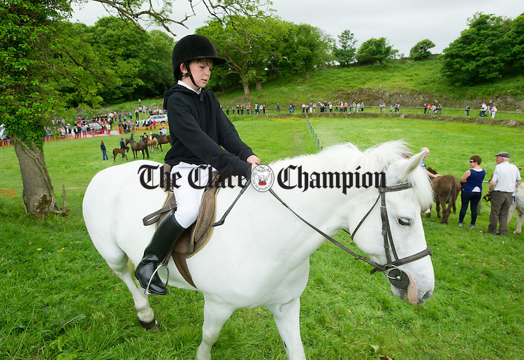 P.C. Scales on his horse during the North West Clare Show on the grounds of The Falls Hotel at Ennistymon. Photograph by John Kelly.