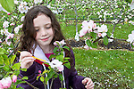 Volunteer 4th graders from Chimacum Grade School learn how to pollinate apple trees at Alpenfire Orchard, Bear Bishop, orchardists instructing, Alpenfire Organic Hard Cider, Port Townsend, Washington State, certified organic cider,