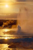 Clepsydra Geyser<br /> Lower Geyser Basin<br /> Yellowstone National Park<br /> Rocky Mountains, Wyoming