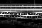 Jockey riding their horses during the race number 7 at Sha Tin racecourse on November 1, 2017 in Hong Kong, China. Photo by Marcio Machado / Power Sport Images