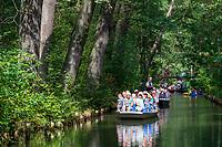 Spreewald-Kähne mit Passagieren auf einem Fließ, Biosphärenreservat Spreewald, Brandenburg, Deutschland