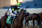 November 28, 2020: Count Again with Juan Hernandez wins the Seabiscuit Hcp at Del Mar Racecourse in Del Mar, California on November 28, 2020. Evers/Eclipse Sportswire/CSM