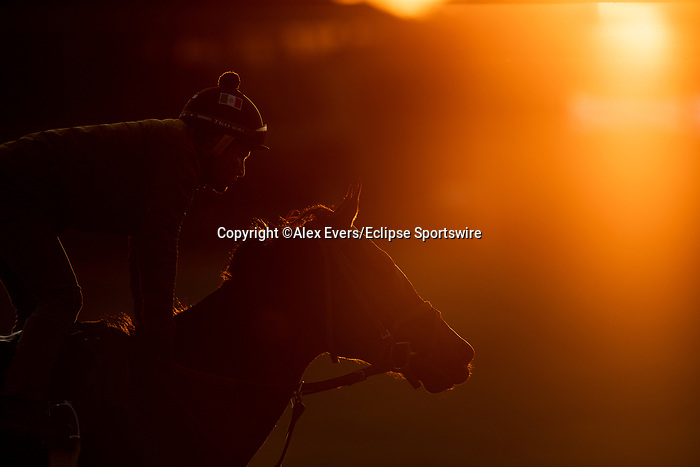 November 1, 2020: Scenes from the workouts leading up to the  Breeders' Cup at Keeneland Racetrack in Lexington, Kentucky on November 1, 2020. Alex Evers/Eclipse Sportswire/Breeders Cup /CSM