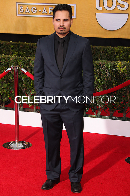 LOS ANGELES, CA - JANUARY 18: Michael Pena at the 20th Annual Screen Actors Guild Awards held at The Shrine Auditorium on January 18, 2014 in Los Angeles, California. (Photo by Xavier Collin/Celebrity Monitor)